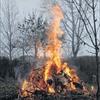 Noch bis 31. März dürfen pflanzliche Gartenabfälle verbrannt werden