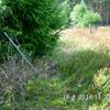 Info an alle Waldbesitzer